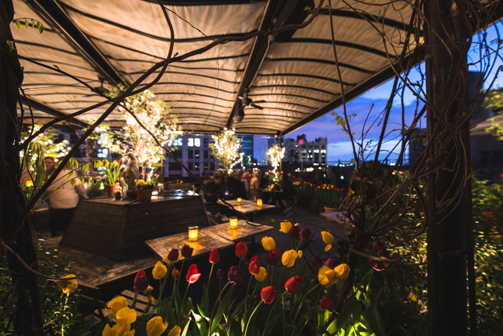 rooftop lighting. IALD New York Invites You To An Evening Of Cocktails And Conversation With The Lighting Design Community In Beautiful Rooftop Gardens At Gallow Green.